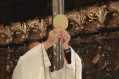 Conmemoración de la coronación de Santa María La Real 30/09/2012