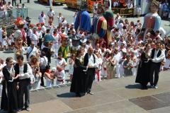 Fiesta de Santa Ana 26-07-2013
